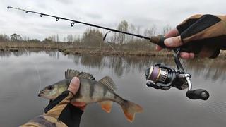 Самый короткий спиннинг 58 см. Ловля окуня и щуки с берега на микроджиг в небольшом озере.