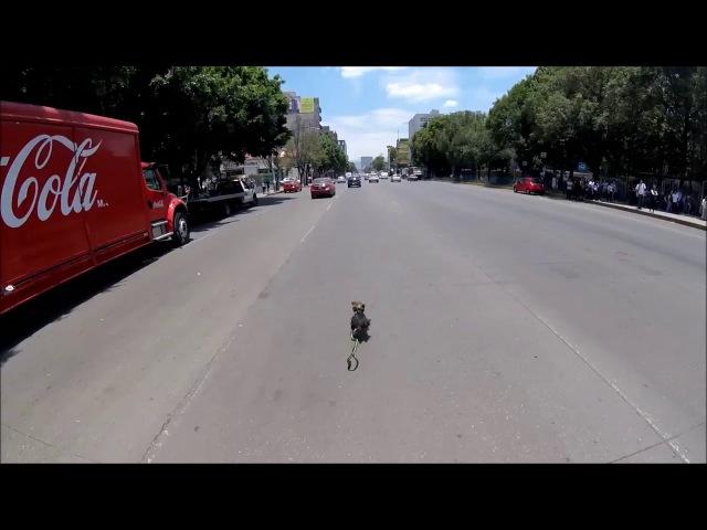 В Мехико велосипедистка, рискуя жизнью, спасла чужого пса. Видео погони велосипедистки за сбежавшей собакой восхитило сеть. / О собаке, человеке, и не только...