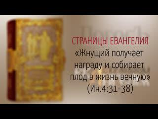 """Страницы Евангелия: """"Жнущий получает награду и собирает плод в жизнь вечную"""" (Ин.4:31-38)"""