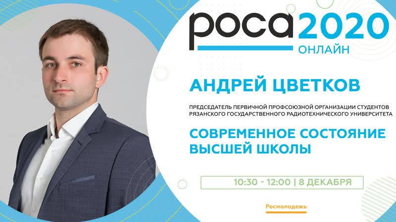Андрей Цветков состояние высшей школы