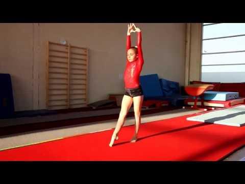 Grading Level D Floor Limerick Gymnastics Club 2017