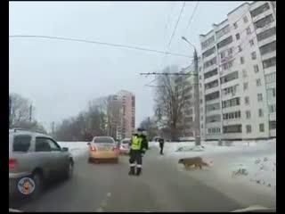 Есть еще хорошие люди)))))))