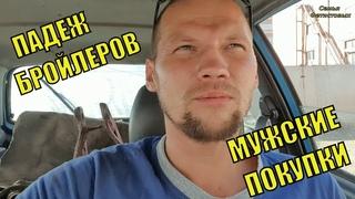 Падеж БРОЙЛЕРОВ. Суровый мужской шопинг/ Семья Фетистовых
