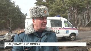 Белгород медиа: В Белгороде прошли учения по тушению природных пожаров