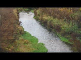 Реализация национального проекта Экология в Ульяновской области