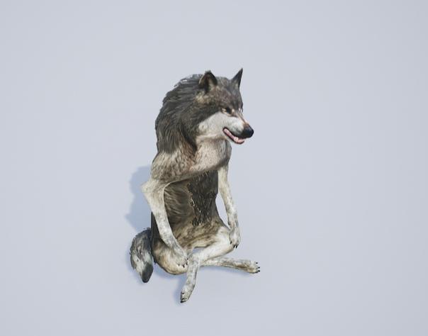 Господи, волки злятся даже во время...