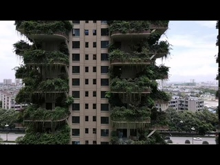 Few residents move in tree-like apartment buildings in Chengdu