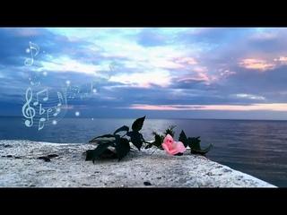Magic MUSIC with Sea Waves HD. Шум моря / природа / роза