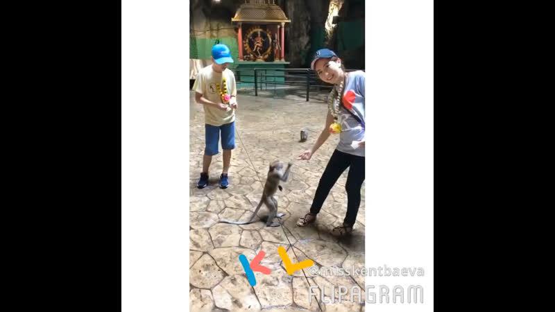 Куала Лумпур Batu caves 2017 December