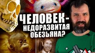 Люди - недоразвитые обезьяны? Александр Соколов | Странная обезьяна | В мире гипотез