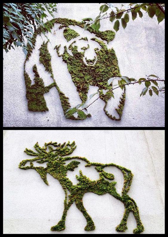 Мох в ландшафтном дизайне, изображение №13