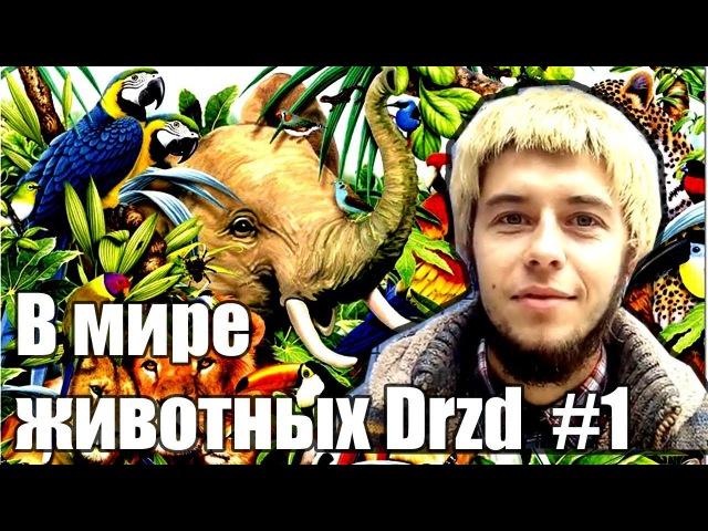 ВмиреживотныхDrzd 1 - Пародия по Дзену