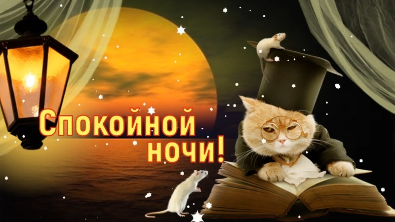 ДОБРОЙ НОЧИ Красивое пожелание Спокойной Ночи Сладких Снов Видео открытка для друзей