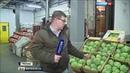 Вести в 20:00 • Продовольственный детектив: корреспондент Вестей вычислил формулу ценообразования