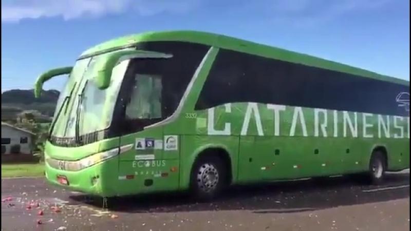 El bus de Brasil bra recibido a pedradas y huevos... - Rusia2018