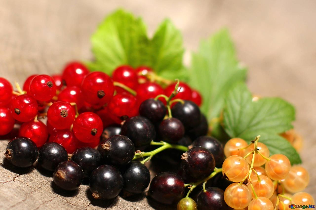 как употреблять ягоды годжи нхл