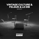 Обложка Monday (Acoustic Version) - Vintage Culture, Felguk, Le Dib