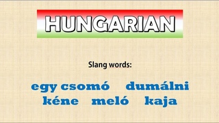 Hungarian in use -- A few slang words