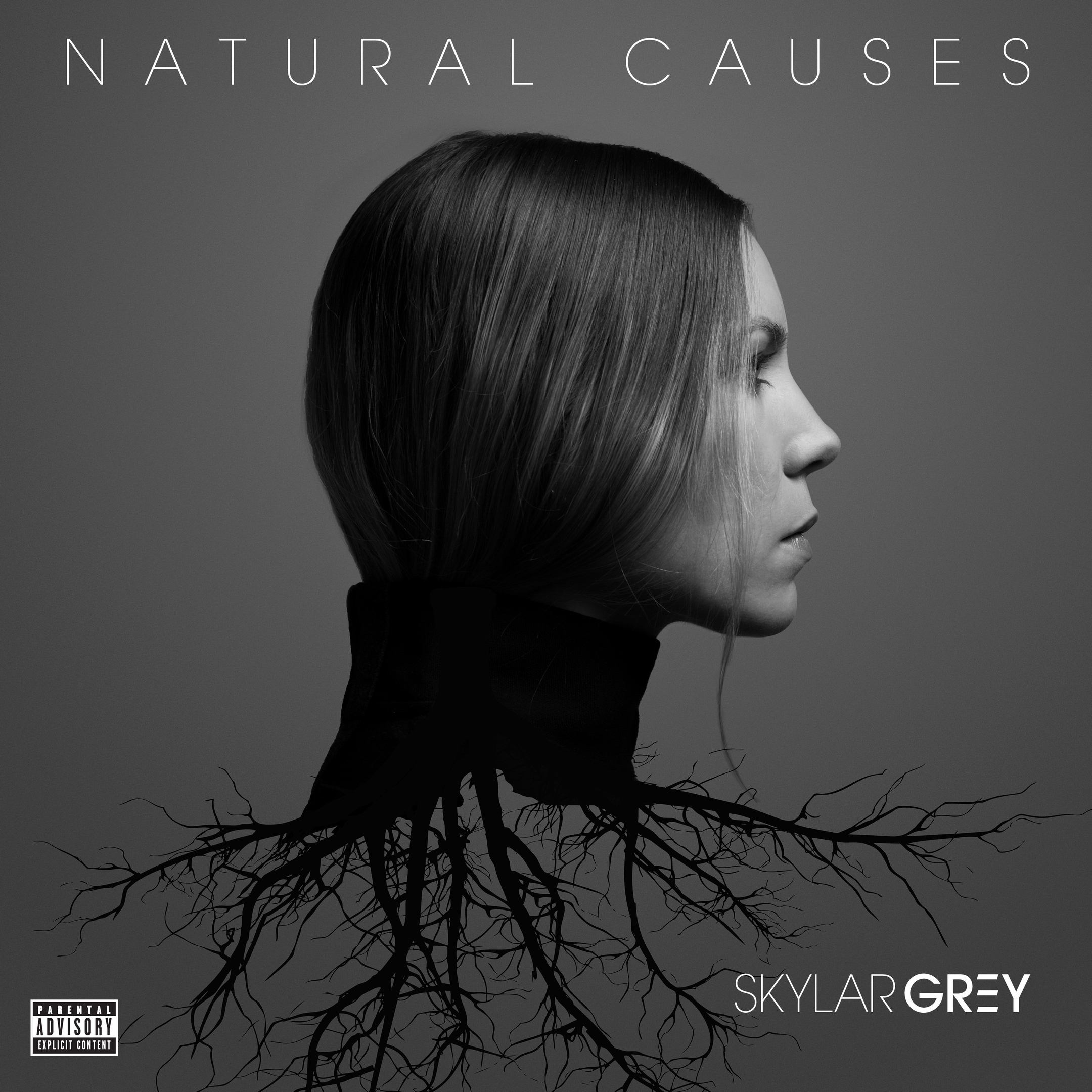 Skylar Grey album Natural Causes