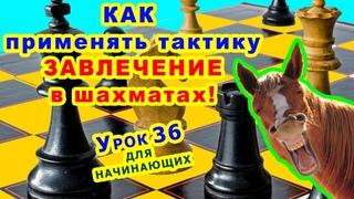 ЗАВЛЕЧЕНИЕ ♕ ШАХМАТНАЯ ТАКТИКА ♖ ШАХМАТЫ УРОКИ ОБУЧЕНИЕ для начинающих онлайн ♔ Правила игры
