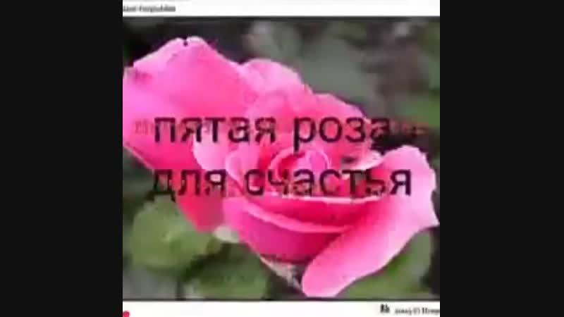 VIDEO-2019-08-17-09-42-14.mp4