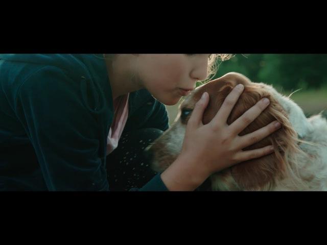 1 Аф класс. Я хочу собаку...