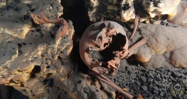 Древние черепа из мексиканских пещер потрясли археологов: коренные народы Четыре древних черепа, обнаруженные в затопленных мексиканских пещерах, заставили археологов всерьез засомневаться