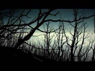 Lightning - Nature Strikes Back (Молния - Природа Наносит Ответный Удар) [2000] (BBC) #доккинз