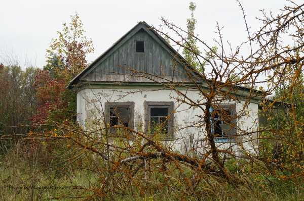 заброшенный земельный участок в собственность