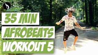 African Dance Online Workout 5 - Afrobeats & Dancehall - P-Square, Afro B, Skales, Konshens, Bracket