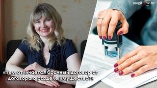 5 вопросов нотариусу / Чем отличается брачный договор от договора о разделе имущества?