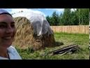 Сколько сена нужно коровам и как его собрать