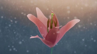 """- No connect (New Italo Disco, video version, Full HD). Clip about love """"Lamp and flower"""""""