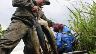 ЖЕСТЬ!!!ЭТИ БУТЫЛКИ ЛОВЯТ В ЛЮБУЮ ПОГОДУ ! Рыбалка в шторм! Как же она таскает эти бутылки!!!