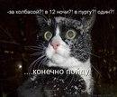 Фотоальбом Екатерины Соловьёвы