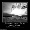Фотоальбом человека Дзиммё Денпачи-Рё