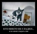 Фотоальбом Игоря Дружинина
