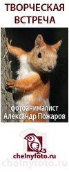 """""""Фотографы в мире животных"""""""