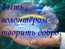 команда волонтёров МУЗ ТВ