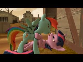 [mlp r34 3.0] rainbow dash and twilight kiss