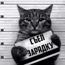 Фотоальбом Павла Неустроева