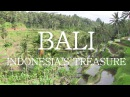 Let's Travel: Bali - Indonesia's Treasure