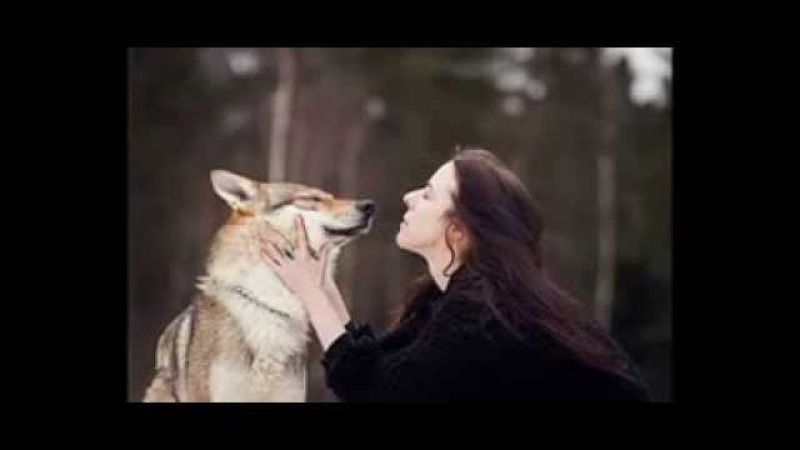 Бегущая с волками К П Эстес Аудиокнига Глава4
