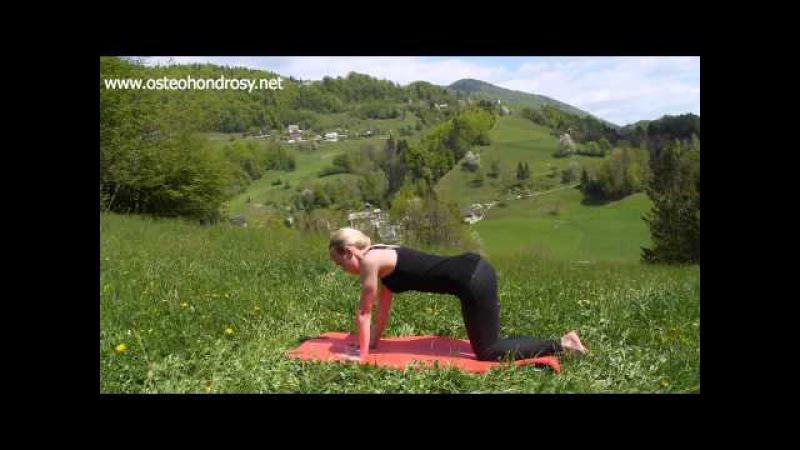7 эффективных упражнений лечебной физкультуры для устранения грудного остеохон