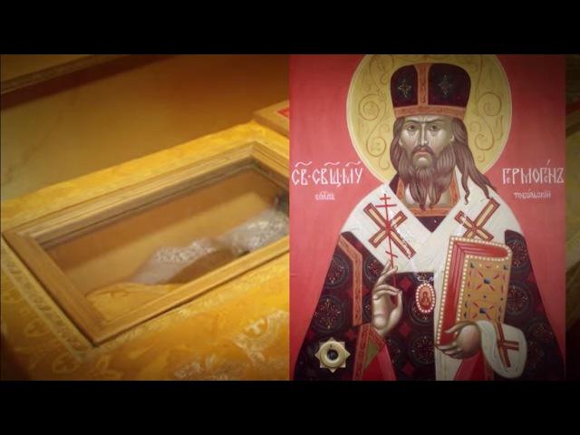 Ангел монархии жизнь и мученический подвиг епископа Гермогена (Долганова)