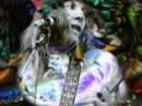 Daevid Allen - Its a fine air for fliss