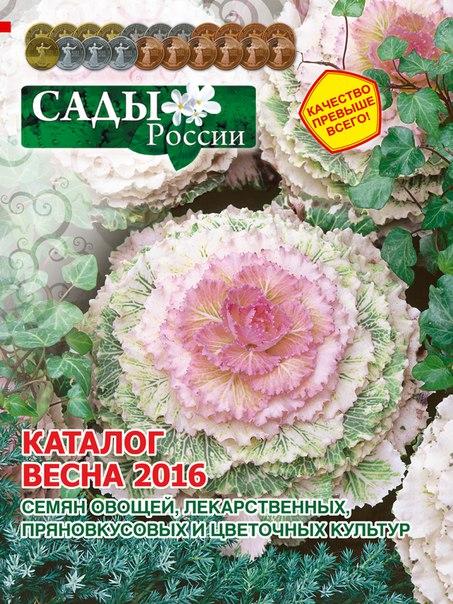 цветы россии челябинск каталог официальный сайт согласно отчетности банка