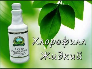 Жидкий Хлорофилл Liquid Chlorophyll   - жемчужина NSP