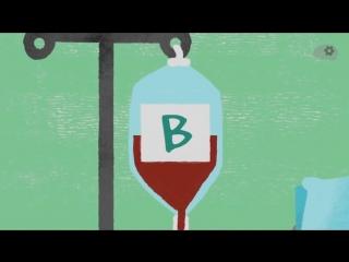 Какое значение имеет группа крови