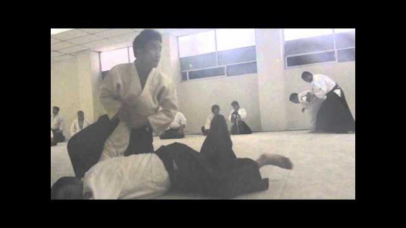 Waka Sensei (Mitsuteru Ueshiba) Ai hanmi katate dori Nikyo